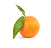 Mandarin Royalty Free Stock Image