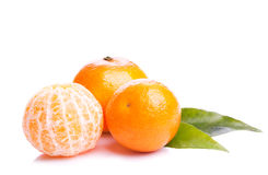 Mandarin. Three mandarin fruit on white background Stock Image