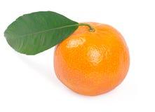 Mandarin. Isolated on white background Stock Image
