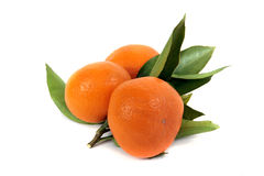 Mandarin. Tangerines with leaves on white background Royalty Free Stock Photos