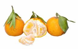 Mandarin. Royalty Free Stock Photography