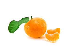 Mandarin Royalty-vrije Stock Foto