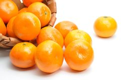 Mandarin baby orange Stock Image