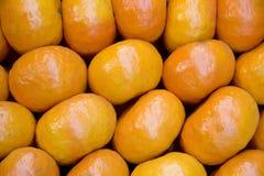 Mandarin background royalty free stock images