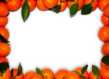 Mandarin border. Will bring u a prosperous new year Royalty Free Stock Photography