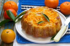Mandarin cake and tangerines on rustic background. stock photography