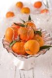 Mandarin for Christmas Stock Images
