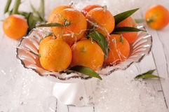 Mandarin for Christmas Royalty Free Stock Images