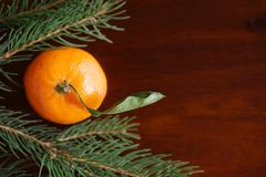 Mandarin among Christmas tree branches. On wooden background Royalty Free Stock Photos
