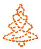 Mandarin Christmas tree Stock Image