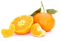 Mandarin citrus Stock Photography