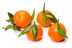 Mandarin close up Stock Photo