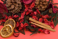 Mandarin,Cloves & Cinnamon Stock Images