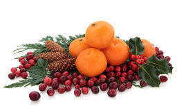Mandarin and Cranberry Fruit Royalty Free Stock Photo