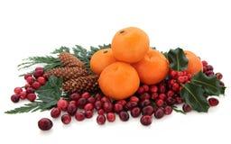 Mandarin and Cranberry Fruit Royalty Free Stock Photo