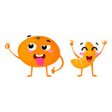Mandarin. Cute fruit vector character couple isolated on white background. Funny emoticons faces. Illustration. Royalty Free Stock Images