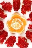 Mandarin en granaatappel Royalty-vrije Stock Foto's