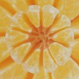 Mandarin från ovannämnd makro Arkivbild