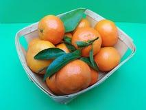 Mandarin fruit food Stock Images