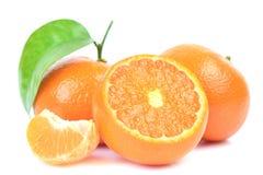 Mandarin fruit. Fruit of a mandarin on a white background stock photos