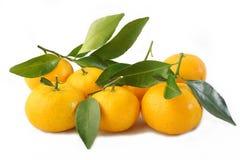 Mandarin fruit isolated on white Royalty Free Stock Photo
