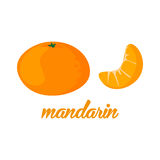 Mandarin fruits poster in cartoon style depicting whole and half of fresh juicy citruses  on white background Stock Images