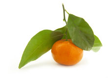 Mandarin with green leaf. Royalty Free Stock Photography