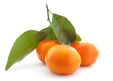 Mandarin with green leaf. Royalty Free Stock Image