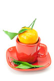 Mandarin with green leaves in a cup Stock Photos