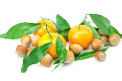 Mandarin with green leaves and nuts Royalty Free Stock Photos