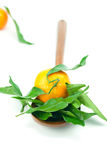 Mandarin with green leaves on a wooden spoon Stock Photos