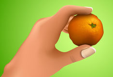 Mandarin in the hand Royalty Free Stock Photos