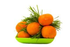 Mandarin in het gras Stock Afbeeldingen