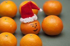 Mandarin i den santa hatten Royaltyfri Fotografi