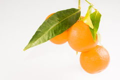 Mandarin with leaf Stock Photos