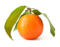 Mandarin with leaves Royalty Free Stock Photo