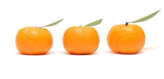 Mandarin with leaves on white Stock Photos