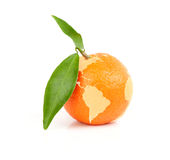 Mandarin with map of the World Royalty Free Stock Images