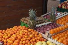 Mandarin med ananasen som ser dig Fotografering för Bildbyråer