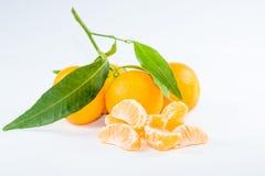 Mandarin med leafen Royaltyfri Bild