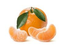 Mandarin med sidor på framdelen och skivor som isoleras på vit Royaltyfria Foton