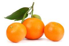 mandarin met groen die blad op witte achtergrond wordt geïsoleerd stock foto's