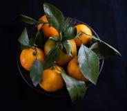 Mandarin met groene bladeren stock foto's