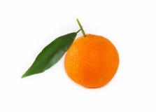 Mandarin met takje en groen blad Stock Fotografie