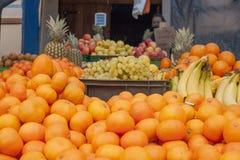 Mandarin mitt framstickande i denna vinter Royaltyfria Bilder