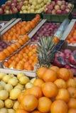Mandarin mitt framstickande i denna vinter Royaltyfria Foton