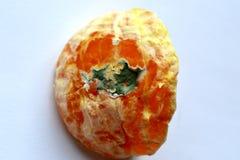 Mandarin with mold. Orange Mandarin with mold lain 7 days Royalty Free Stock Photography