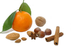Mandarin with nuts and cinnamon sticks. On white Stock Images