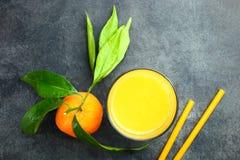 Mandarin och fruktsaft Royaltyfria Bilder