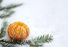 Mandarin op de sneeuw Stock Foto's